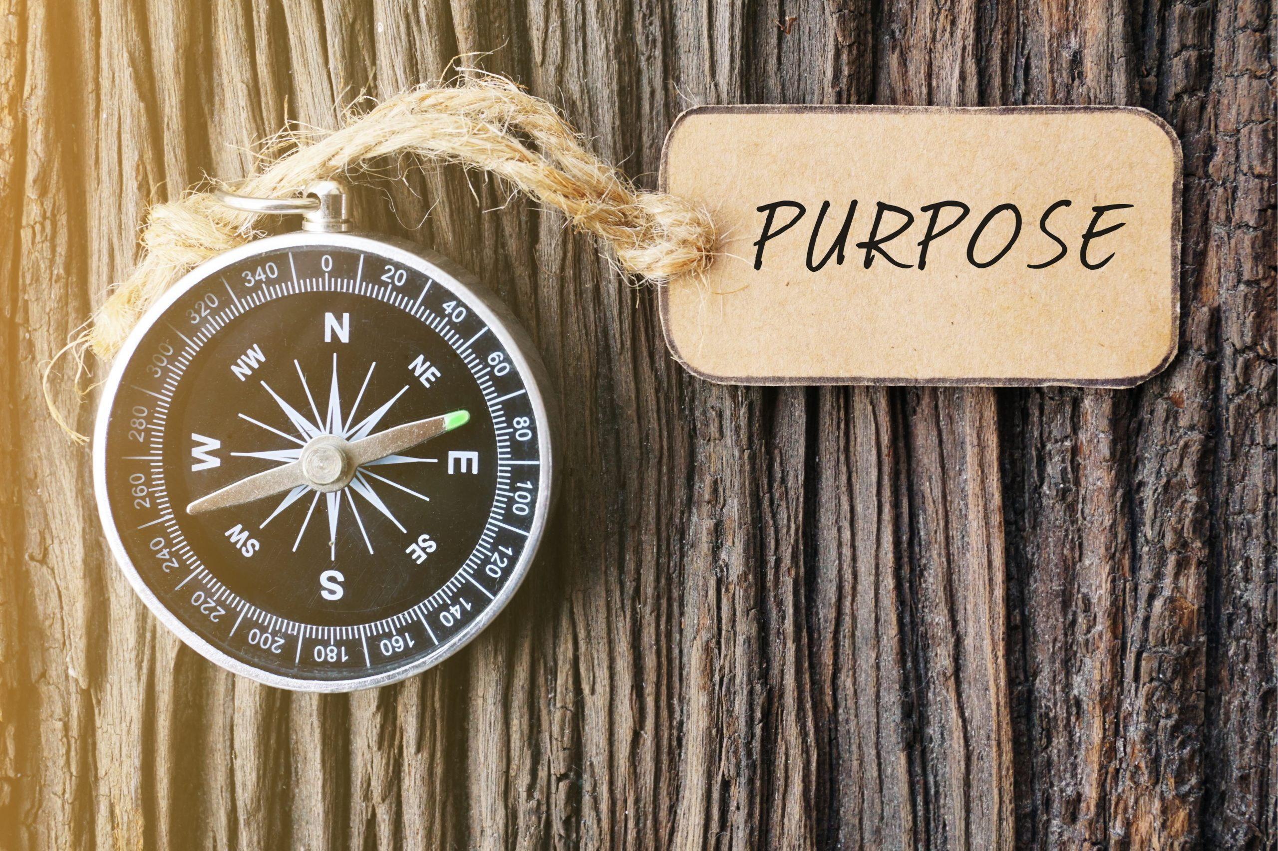 For a Robust Culture, Connect to Purpose
